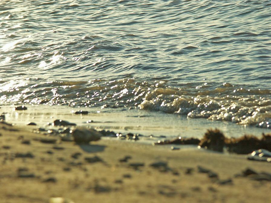 Песчанный берег морская волна река